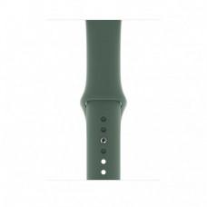 Ремешок для Apple Watch 42/44mm Sport Band Pine Green (MWUV2)